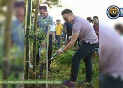 Velasco, nanguna sa pagtatanim ng 40 kawayan sa Boac river bank