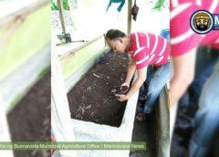 Greenhouse at vermicomposting facilities itinayo sa Buenavista