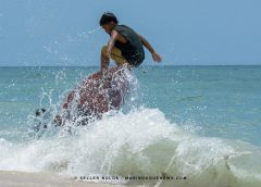Skimboarding, nauusong 'water sports activity' sa Poctoy White Beach