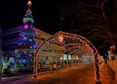 Giant Christmas Tree, Tunnel of Lights sa Torrijos, pinailawan